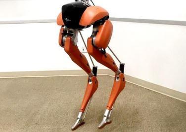 Del robot cassie aprenden los demás